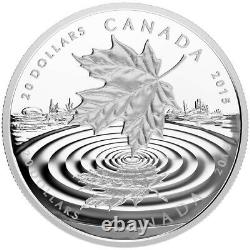 2015 Canada Maple Leaf Reflection 1oz Fine 999 Silver coin 20 Dollars Rare